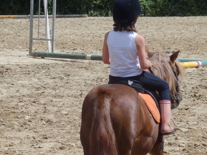 vibraye equitation - cours baby